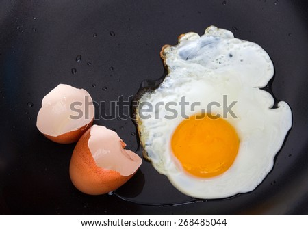 eggshell  and Fried Egg - stock photo