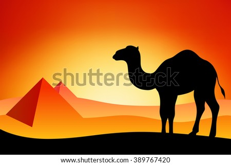 Egypt camel silhouette landscape nature sunset sunrise illustration  - stock photo