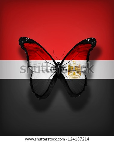 Egypt flag butterfly, isolated on flag background - stock photo