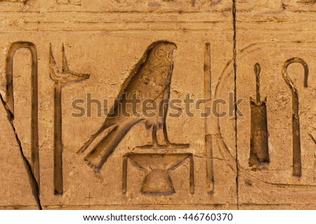 Egypt Hieroglyphs Bird Egyptian Hieroglyph Closeup Stock Photo