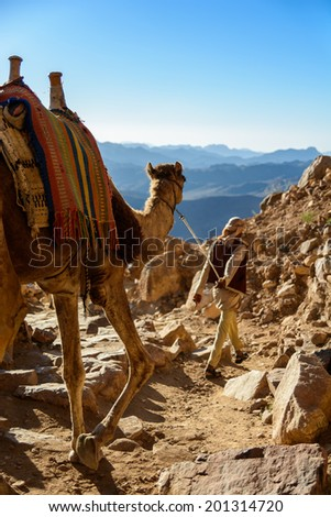 Egypt, Sinai, Mount Moses. Road on which pilgrims climb the mountain of Moses and bedouin with camel on the road. - stock photo