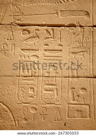 Egyptian hieroglyphs in Karnak temple, Luxor, Egypt