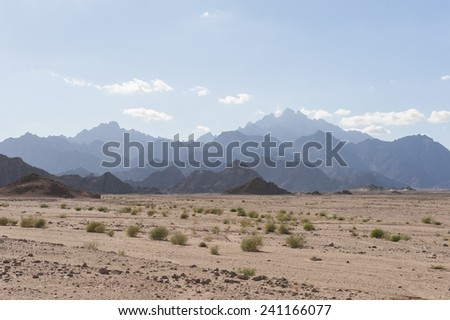 Mountain range isolated stock images royalty free images egyptian rocky desert landscape with plants and mountain range sciox Gallery