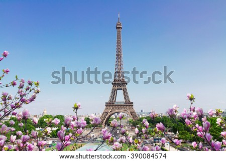 Eiffel Tower  and Paris cityscape in spring sunny day with tree flowers, France - stock photo