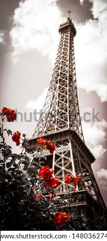 Eiffel tower and red rose shrub. Cross process. Sepia. Shadowed angles. Retro style postcard. - stock photo