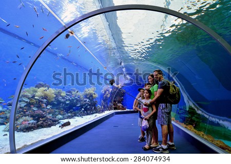 EILAT, ISR - APRIL 16 2015:Visitors in the Shark Pool of Coral World Underwater Observatory aquarium in Eilat, Israel.It's the biggest shark pool in the Middle East, covering an area of 1000m2. - stock photo