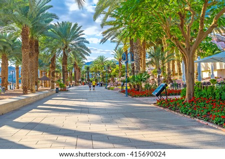 EILAT, ISRAEL - FEBRUARY 23, 2016: The shady green promenade with lush palms is the best place to spend the hottest hours of the day, on February 23 in Eilat.