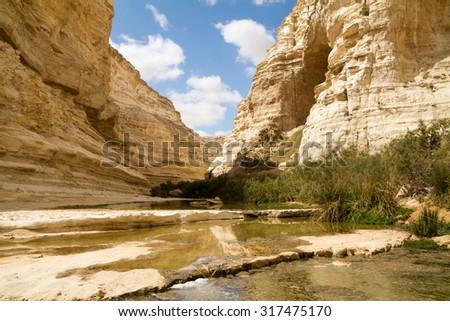 Ein Avdat Canyon on the Negev desert.  - stock photo