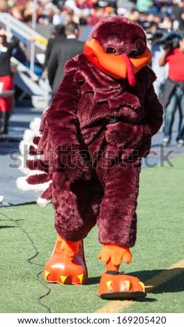 EL PASO, TEXAS -�� DECEMBER 31.  Virginia Tech�s mascot, the Hokie Bird,  at the Sun Bowl on December 31, 2013 in El Paso, Texas.   - stock photo