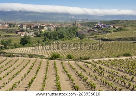 ELCIEGO, SPAIN - MAY 9: Vineyards and town of Elciego with the modern winery of Marques de Riscal on May 9, 2014 in Elciego, Basque Country, Spain. This modern winery was designed by Frank Gehry. - stock photo