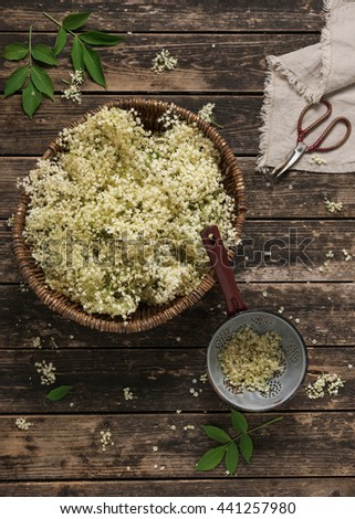 Elder flowers in wicker basket on rustic wooden background. Alternative medicine and organic food. Top view.  - stock photo