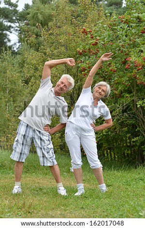elderly couple on a walk in the park - stock photo