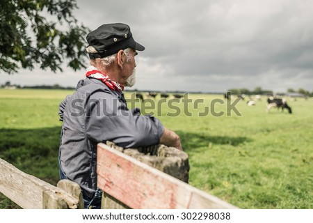 Elderly farmhand leaning against the wooden gate watching a herd of dairy cows in a pasture - stock photo