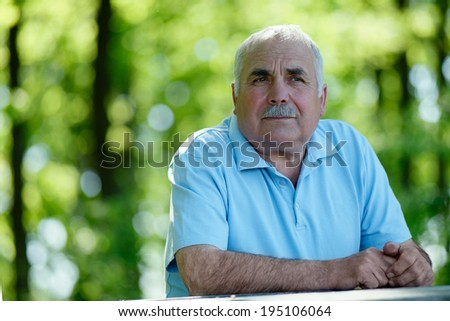 Elderly grey-haired retired man with a moustache sitting outdoors in a lush green park smiling at the camera - stock photo