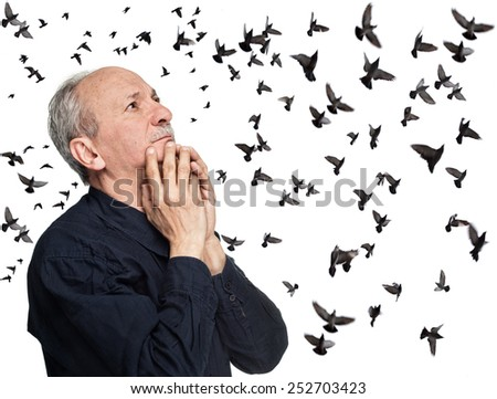 Elderly man looking up on sky with flying birds