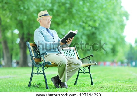 Elderly reading a novel seated on bench in the park - stock photo