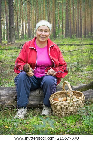 Elderly woman collect mushrooms in a pine forest in September