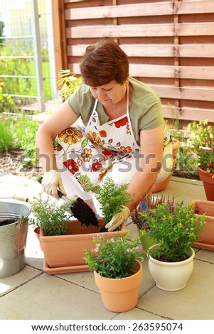 Elderly woman planting flowers and herbs - stock photo