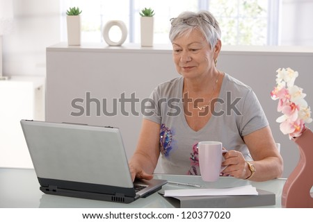 Elderly woman working on laptop computer, smiling, drinking tea. - stock photo