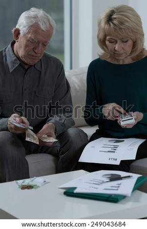 Elderly worried marriage checking the bills - stock photo