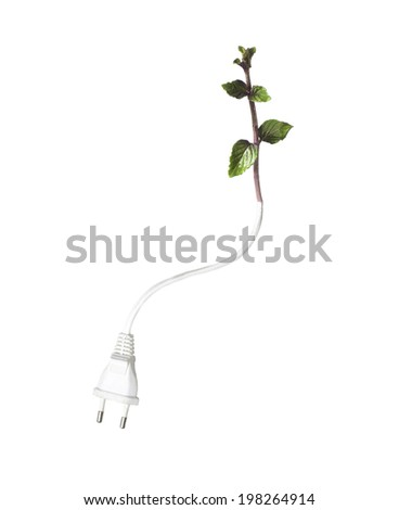 Electric cable and green plant