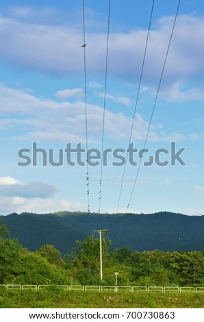electric line led to the moutain
