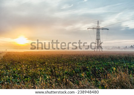 Electric power lines and pylons at sunset in a cultivated field - stock photo