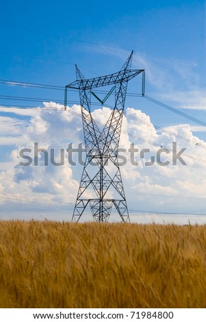 Electrical tower standing in the middle of a wheat field