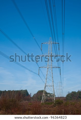 Electricity pylons make their way through the New Forest national park.