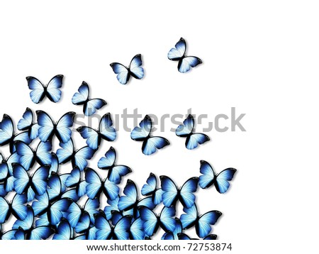 elegant abstract background with blue butterflies - stock photo