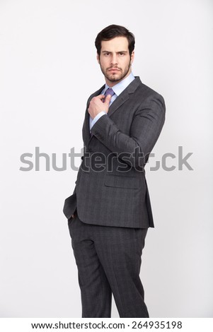 elegant businessman wearing grey suit and tie with beard , isolated