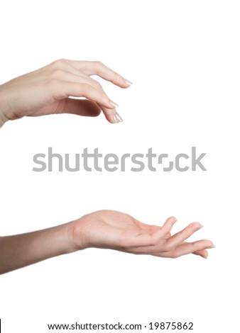 Elegant female hands in a beautiful composition on a white background - stock photo