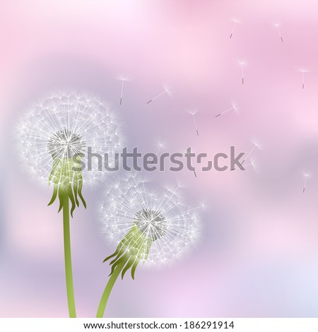 Elegant illustration with spring flowers on a pink background. - stock photo