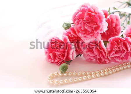 Elegant pink carnation for Mother's day image - stock photo