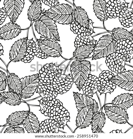 Elegant seamless pattern with hand drawn decorative raspberries, design elements. Can be used for invitations, greeting cards, scrapbooking, print, gift wrap, manufacturing. Food background - stock photo