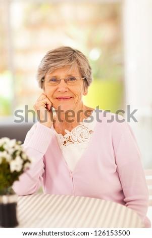 elegant senior woman at home - stock photo