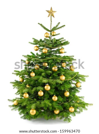 Elegant studio shot of a Christmas tree with gold ornaments, isolated on white - stock photo