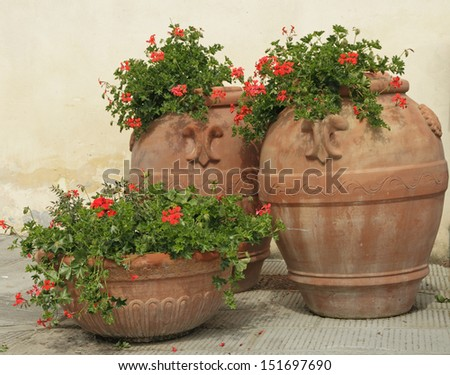 elegant traditional terracotta vases with geranium flowers on tuscan piazza, Italy - stock photo