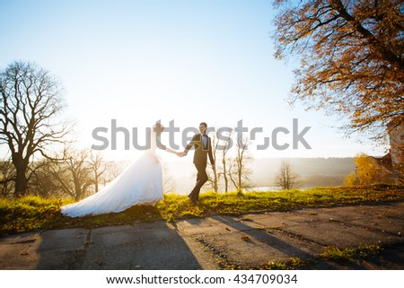 elegant wedding couple, walk in the park background - stock photo