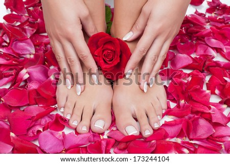 Elegant woman's hand with manicure and feet with pedicure on red rose petals background. Relaxing pedicure and manicure with a red rose flower. Beautiful manicure and pedicure with a rose. - stock photo