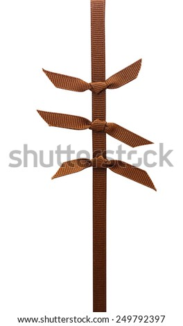 element of decor brown ribbon isolated on a white background.