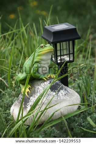 Element of landscape design - garden light in the grass for garden decoration with frog figurine. Solar-powered lamp to illuminate the garden.