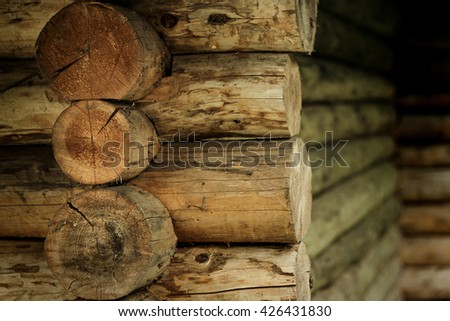 elements of old wooden ukrainian house with straw roof in summer garden - stock photo