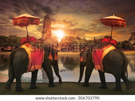 elephant dressing with thai kingdom tradition accessories standing in front of old pagoda in Ayuthaya world heritage site use for tourism and multipurpose background , backdrop  - stock photo
