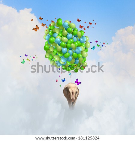Elephant flying in sky on bunch of colorful balloons - stock photo
