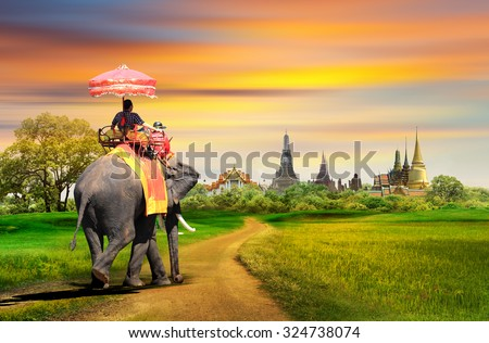 Elephant for tourists on an ride tour in Bangkok, Thailand, concept - stock photo
