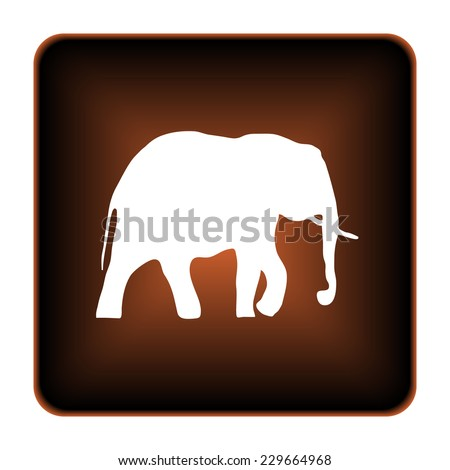 Elephant icon. Internet button on white background.  - stock photo