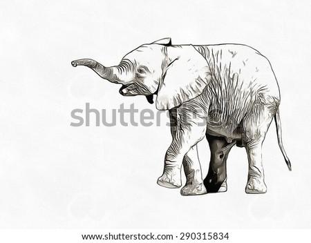 Elephant pencil sketch - stock photo