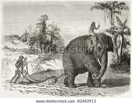 Elephant ploughing old illustration, Ceylon (nowadays Sri Lanka). Created by Therond and Huyot after Andrasy, published on Le Tour du Monde, Paris, 1860