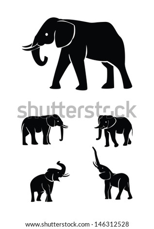 elephant set collection